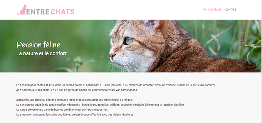 entre-chiens-pension-feline